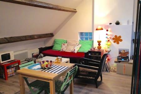 Joli studio chez l'habitant proche Lens. EURO 2016 - Apartment