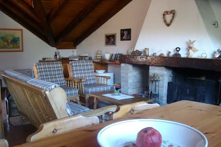 Graziosa casa nel cuore delle alpi - Paluzza