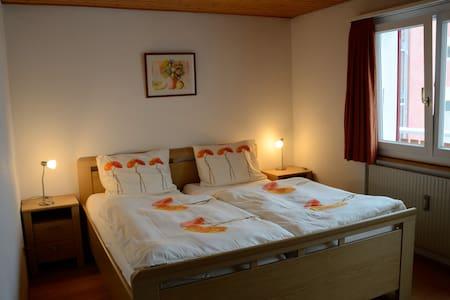Tulpenhaus-6p, lovely appartment - Fiesch
