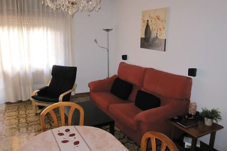 Quiet and spacious room - Appartement