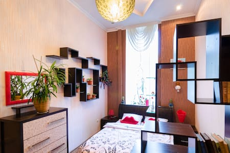 Уютная двухкомнатная к-ра в центре - Lviv - Appartement