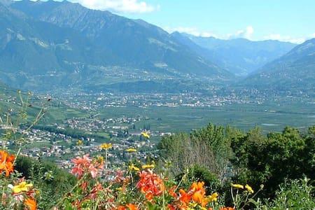 Alpenrose im Vitalhof Niederhof - Appartamento