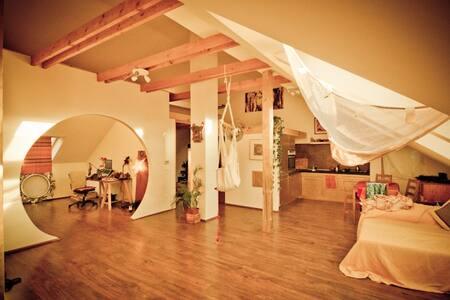 Photographer's studio 80nm2 :) - Flat