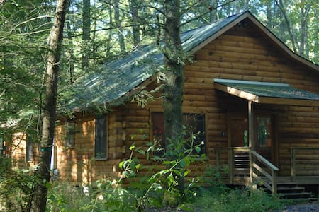 Peaceful Log Cabin 8 ft from Creek  - Burnsville - Ev