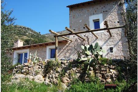 Old casale  - Villa