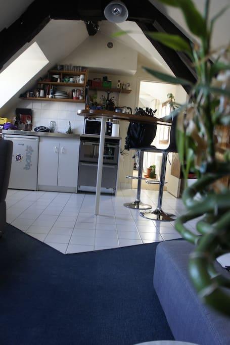 La petite cuisine est fonctionnelle pour se préparer un petit diner ou un encas .