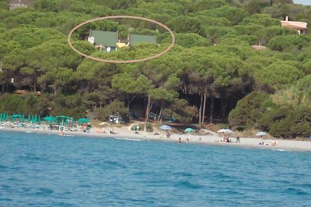 Villa a 20m dal Mare (apt.3) - Apartment