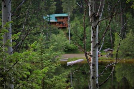 Wildwood Cabin - Wardner - Blockhütte