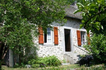 Maison- Chataigneraie-Cantal - Casa