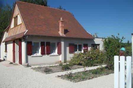 Gite  le clos des Grenouilléres - Romorantin-Lanthenay - Haus