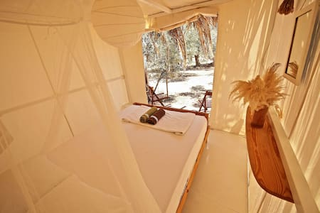 Cool canvas tents with bedsteads - Tent