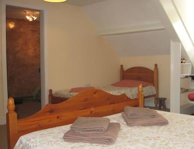 Rooms in Bideford, North Devon, U.K - House