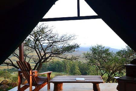 Aloe Tented Camp - Tent