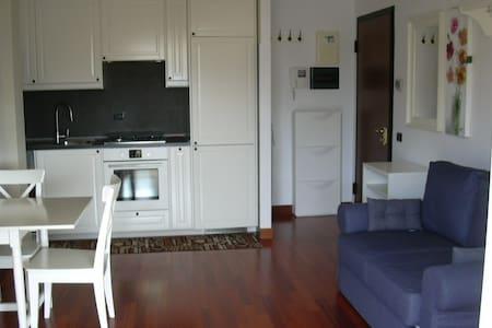 nice apartment sleeps three - Magenta - Lägenhet