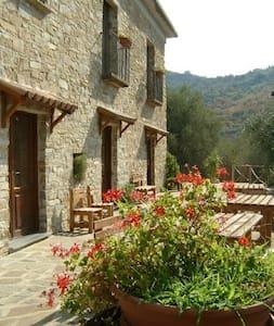 Relax e tranquillità a Castellabate - Bed & Breakfast