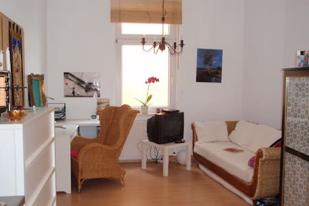 Gemütliche 1-Raum-Whg an der Saale - Apartment