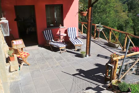 Little Tuscan Olive Farm - Cosy Apartment - Castelvecchio