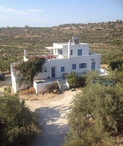 Aegina Mountain Aromas - Aegina - House