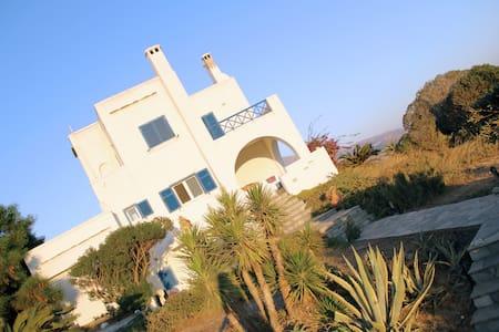 Andros - Charming Family Villa - Villa