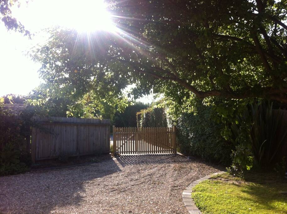 View of the driveway entry from the studio. Private and off the street.