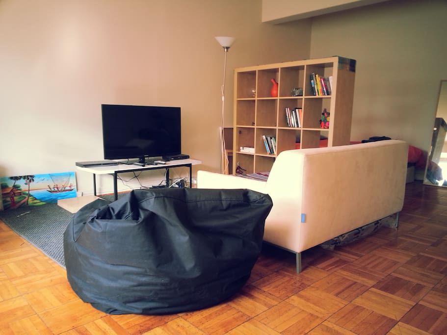 Comfy sofa and bean bag chair with a new TV and DVD player