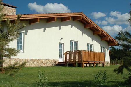 Одноэтажный коттедж 180 кв.м - Московская область, Дмитровский район - Haus