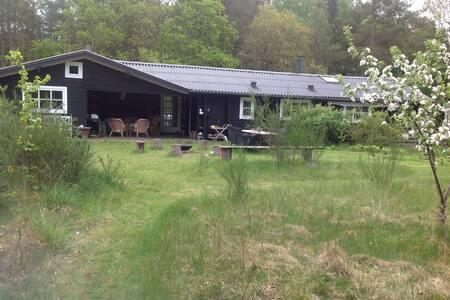 Sommerhus - Ebeltoft - Kabin