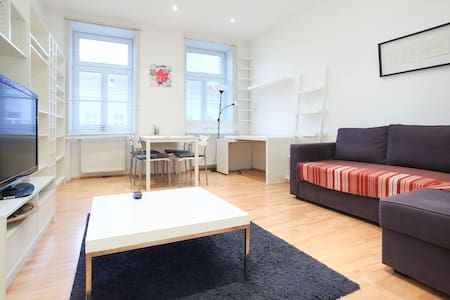 Comfortable two bedroom Apartment! - Vienne - Appartement