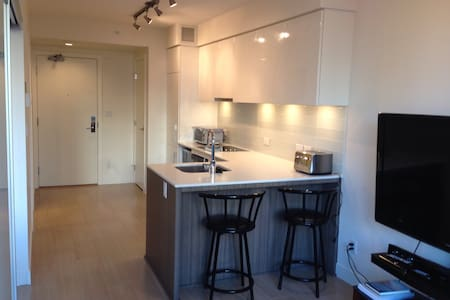 Brand New 1 Bedroom located in Downtown Vancouver. This clean 1 Bedroom is conveniently located close to Davie and Granville street. Perfect for a comfortable stay to set up base to explore beautiful Vancouver. 2 blocks away from the Seawall bordering the ocean inlet. Moments away from Granville Island ferry.