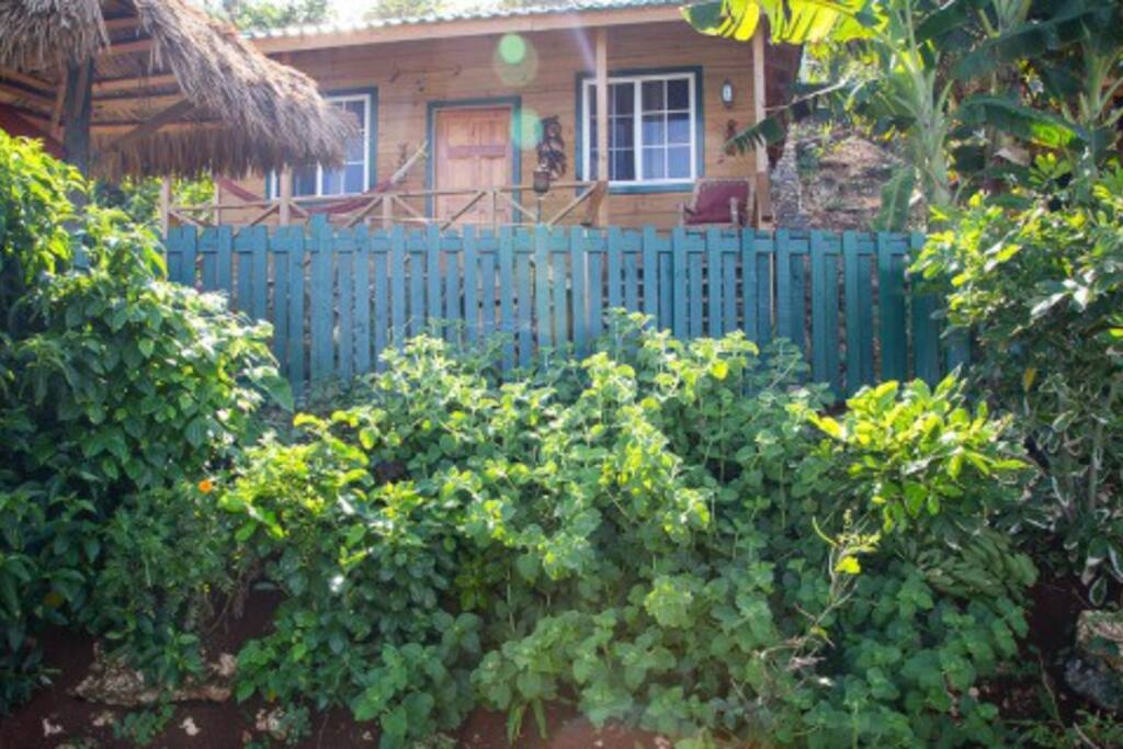 Street vie of each bungalow