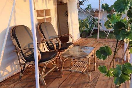 Glamorous tents at Talpona Beach - South Goa