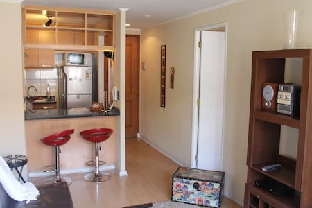 Great apartment in Providencia