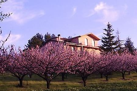 Podere Costantino - Alba apartment - Heavenly view - Flat