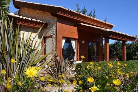 Villa Medronho - House
