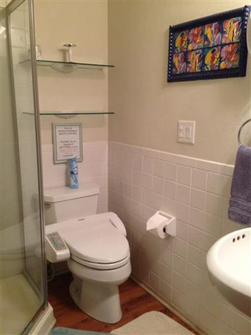 bath with glass shower and bidet