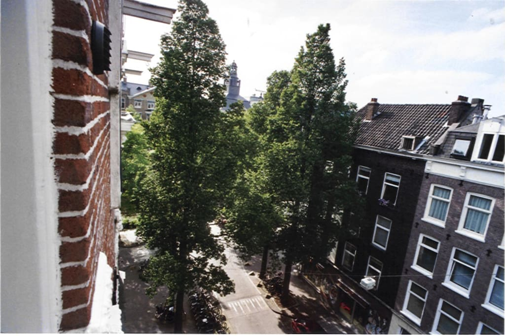 View from front rooms into Gerard Doustraat.
