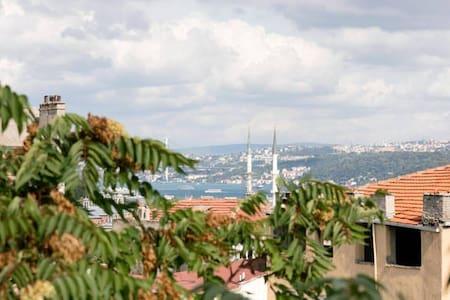 DELUX FLAT NEAR OF ISTANBUL GALATA - Huoneisto