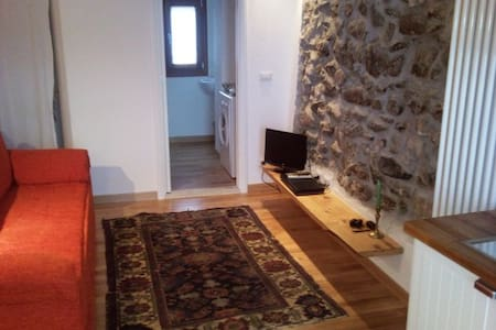 Limone Piemonte centralissimo - Apartment