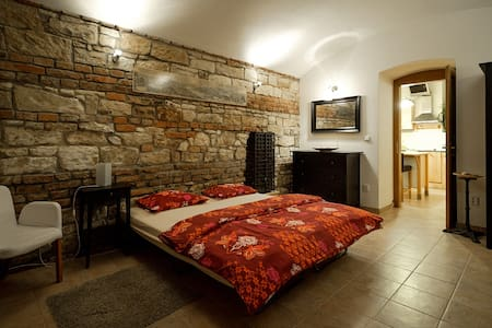 Brick Wall Studio Apartment