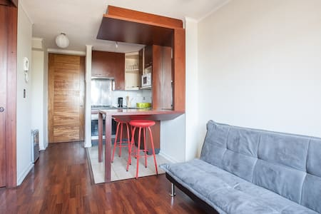 Bellas Artes The Best Apartment - Santiago - Apartment