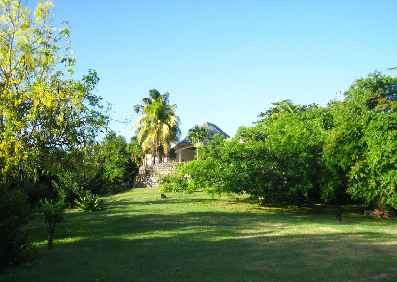 A small part of the property surrounding the estate with the ancient Sugar Mill and new Sugar House just above