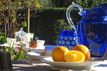 Villa Colle Olivi - b&b - Bed & Breakfast