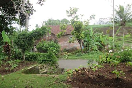 village home - House