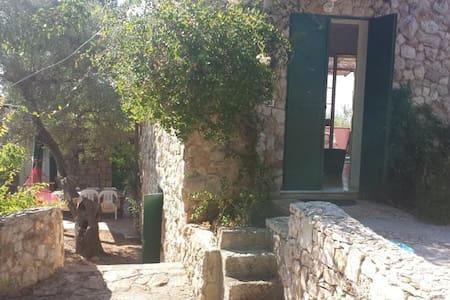 Villa Minteco - Casa