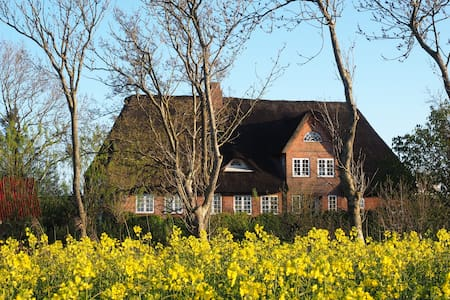 thatched roof, art, organic garden - Huis
