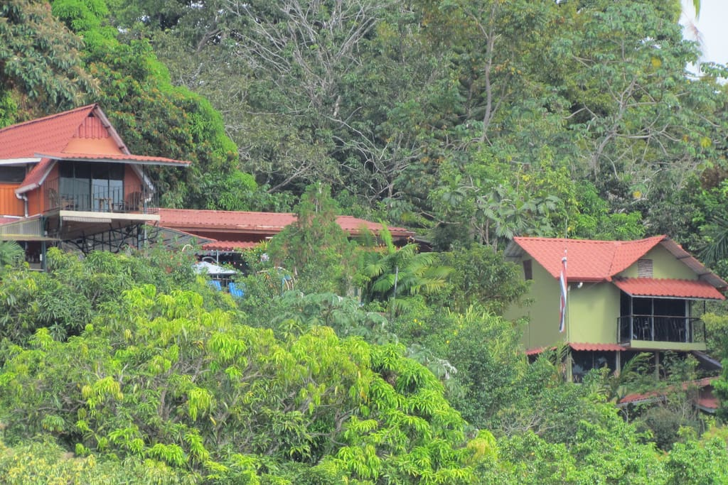 Hidden away in a lush tropical hillside and still close to town