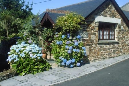 Wild Flower Cottage Newquay   - Newquay - Hus