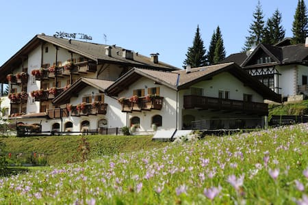 Alpine Touring Hotel sulle Dolomiti - Bed & Breakfast
