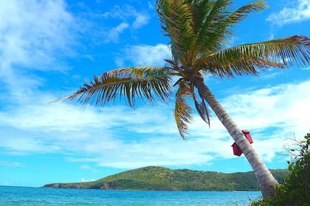 Tent on Flamenco Beach''' - Culebra - Tent