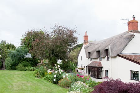 Delightful thatched cottage B&B - Williton